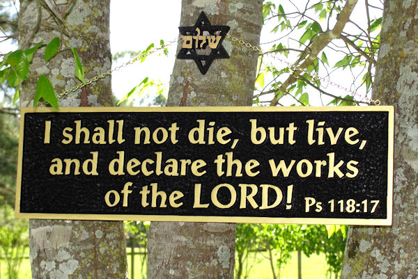 I Shall Not Die But Live!